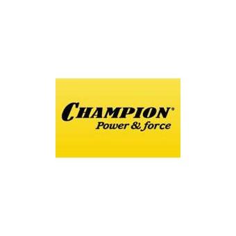 Гарантийный ремонт Champion